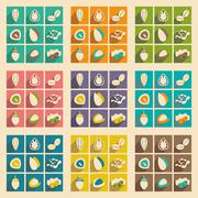 Flat with shadow concept and mobile application nuts icons Stock Illustration