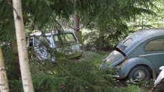 3 Old Beetle VW at an undisclosed location in a Swedish forest Stock Footage