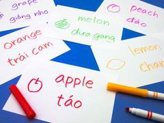 Making Language Flash Cards; Vietnamese - stock photo
