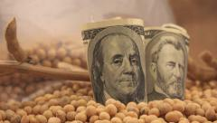 Profit from soybean cultivation in USA - stock footage