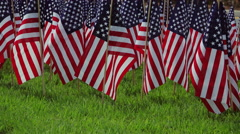 Display of small flags. Close up. Stock Footage