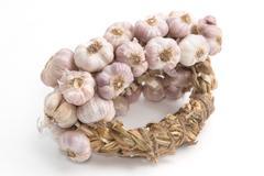 Bundle of garlic isolated on white backgrond - stock photo
