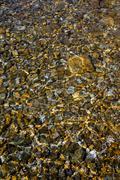 Rocky Stones in Underwater Stock Photos