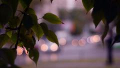 Urban scene with defocused foot-passenger and car headlights through foliage. - stock footage