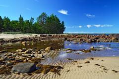 White Sea shore during low tide. Karelia, Russia - stock photo