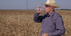 Agricultural Producer Farm Owner Sweating Inspect Wheat Crop Hot Day Drink Water Stock Footage