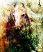 Horse and lion heads, abstract ocre background, with one dollar collage. texture Stock Illustration