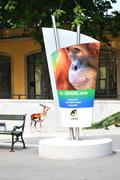 Schonbrunn Zoo - stock photo