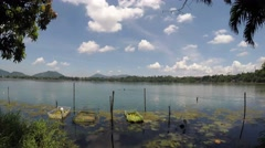 Lilies and Bamboo Fish Cages pollute lake - stock footage