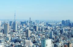 Tokyo skyline - stock photo