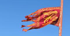 Venice flag - stock photo