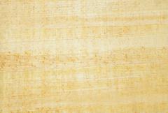 Papyrus texture - stock photo