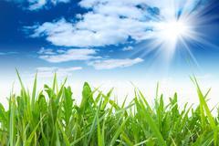 Green grass with cloudy sky Stock Photos
