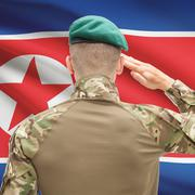 Soldier in hat facing national flag series - North Korea Stock Photos