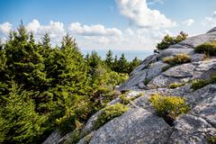 Afternoon on top of a New England Mountain - stock photo