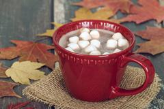 Hot Chocolate and Marshmallows with rustic autumn background - stock photo