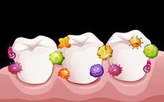 Bacteria in human teeth - stock illustration