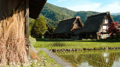Shirakawa Two Gassho Houses in Rice Fields Dolly Right Stock Footage
