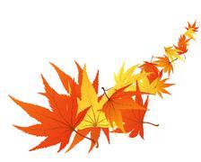 twisted leaves - stock illustration