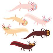 Cute orange pink brown Axolotl Cartoon character (Mexican salamander, Ambystoma Stock Illustration