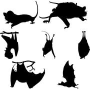 Bats silhouettes set Piirros