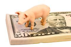 Pig on dollars banknotes Stock Photos