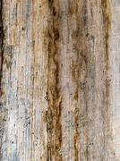 Old wooden wall, background Stock Photos