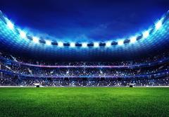 modern football stadium with fans in the stands - stock illustration