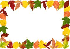 Frame made of autumn leaves Stock Photos