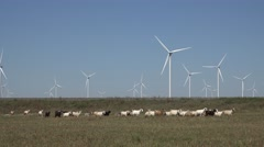 4K Wind turbine goat herd countryside energy source generation sustainable mill  Stock Footage