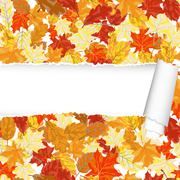 Autumn maple seamless pattern with ripped stripe - stock illustration