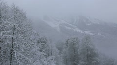 Beautiful snow covered trees in mountains Stock Footage