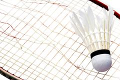 Racket and Shuttlecock on Broken badminton white background Stock Photos