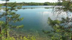 Tilt shot showing lake behind trees Stock Footage