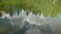 Trees and sky reflection in calm forest pond 4k Stock Footage