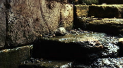 Water running down old stone stairs shot in Israel. Stock Footage