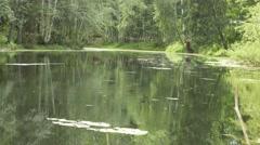 Rain on the pond 4k Stock Footage