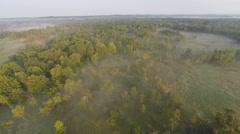Forward Marsh Fog Aerial Video Stock Footage