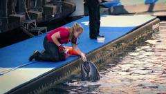Zookeeper Feeds Fish To Dolphin Stock Footage
