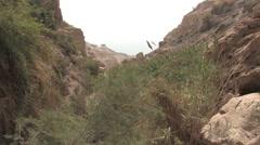 Ein Gedi Nature Preserve at Ein Gedi, Israel - stock footage