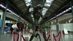 Alien sculpture in shopping centre - stock footage