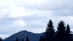 Fir tree silhouettes sway on background of mountain and clouds Stock Footage
