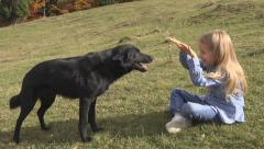 Little Girl Feeding Dog on Meadow, Child Playing a Friend, Puppy Pet Eating Stock Footage