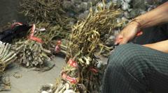 Cutting Herbs South Korean Street Market Stock Footage