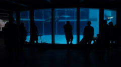 People Silhouetted At An Underground Aquarium - stock footage