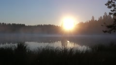 Locked-down shot of rising sun behind trees at a foggy lake in morning - stock footage