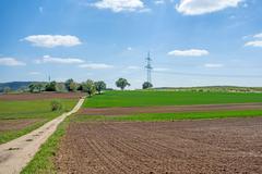 Country lane through farmland Kuvituskuvat