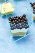 Blueberry dessert with cream and liqueur Stock Photos