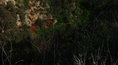 Stock Video Footage of Video panorama of Tahana Waterfall shot in Israel.