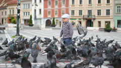 Lovely child play, pigeons nibble downtown, happy baby boy scream, birds fly Stock Footage